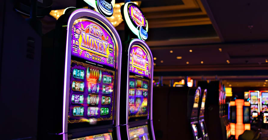 What You Need to Know About Play'n Go Money Spinning New Slots - Rabbit Hole Riches